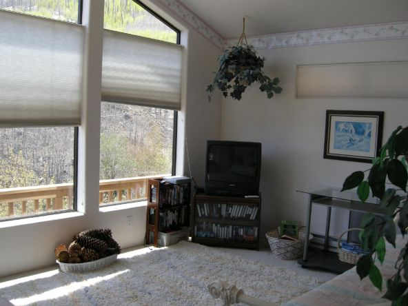 11101 Carter Canyon, Mount Lemmon, AZ 85619 Photo 15