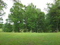 Home for sale: Lot 15/16 Charleston, Hawkinsville, GA 31036