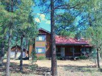Home for sale: 3022 Chevelon Rd., Overgaard, AZ 85933