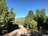 Home for sale: 9 Moose Hollow Rd., Lava Hot Springs, ID 83246