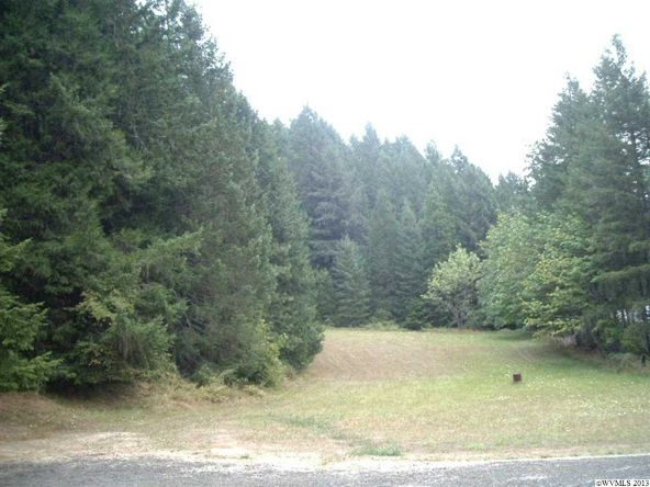 5833 Hubbard Creek Rd., Umpqua, OR 97486 Photo 12