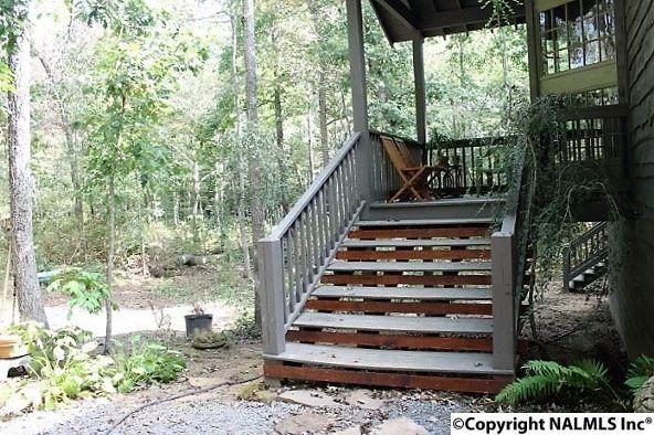 493 Cove Rd., Mentone, AL 35984 Photo 45