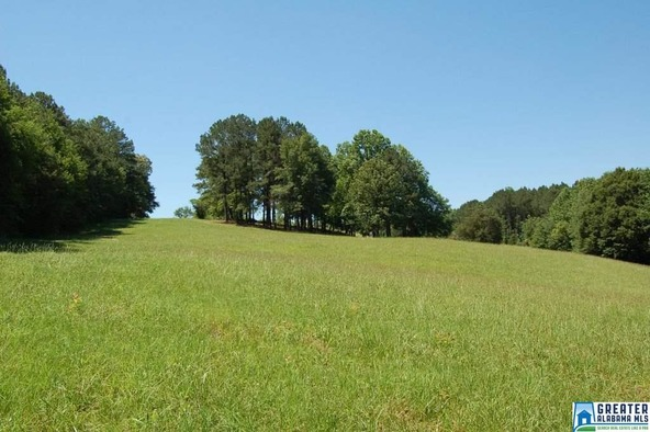 5.5 Acres Hwy. 431, Wedowee, AL 36278 Photo 14