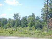 Home for sale: Buffalo Rd., Churchville, NY 14428