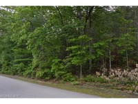 Home for sale: Lot 46 Linville Dr., Marion, NC 28752