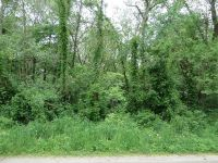 Home for sale: E. Gregg Blvd., Momence, IL 60954