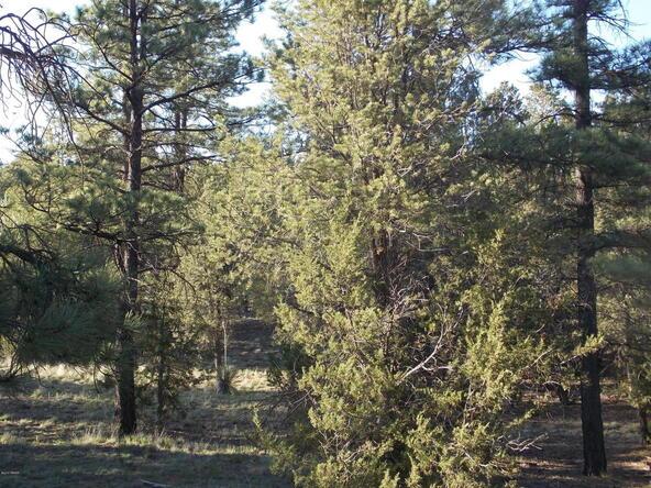 2945 Lodgepole, Overgaard, AZ 85933 Photo 1