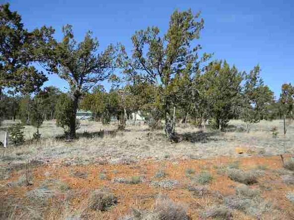 3328 Cedar Dr., Overgaard, AZ 85933 Photo 3