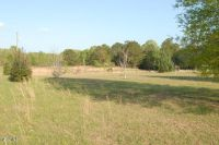 Home for sale: 153a Wes Havard Rd., Lucedale, MS 39452