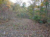 Home for sale: 416 Lacey Fern Ridge, Sylva, NC 28779