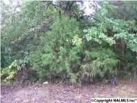 Home for sale: 17 Willmon Cir., Scottsboro, AL 35769
