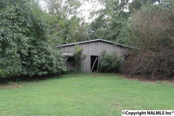 797 County Rd. 522, Fyffe, AL 35971 Photo 44