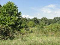 Home for sale: 000 Chestnut Ridge, Houston, MO 65483