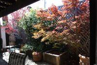 Home for sale: 1568 Lockwood Dr., Ukiah, CA 95482