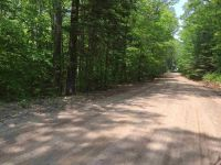 Home for sale: 0 Tobey Rd., Campton, NH 03223