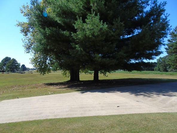3629 Cr 50, Rogersville, AL 35652 Photo 33