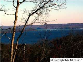 121 Legendary Dr., Guntersville, AL 35976 Photo 3