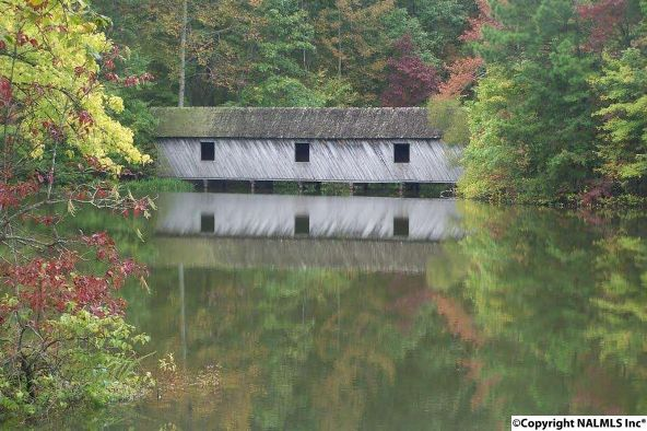 9 South Bluff Trail, Huntsville, AL 35803 Photo 15