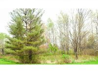 Home for sale: Lot B W. Dryden Rd., Dryden, NY 13068