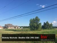 Home for sale: Lot 18 Grand Bayou, Des Allemands, LA 70080