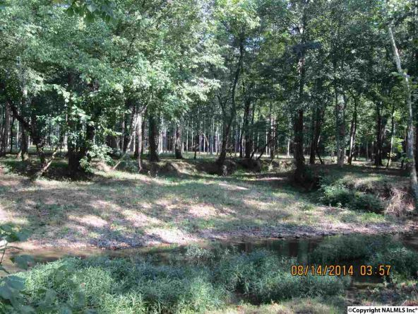 1865 County Rd. 99, Gaylesville, AL 35973 Photo 12