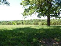 Home for sale: 26318 Farm Rd. 1197 130 Land, Eagle Rock, MO 65641