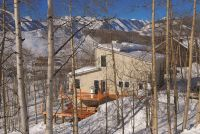 Home for sale: 59 Cinnamon Mountain Rd., Crested Butte, CO 81225
