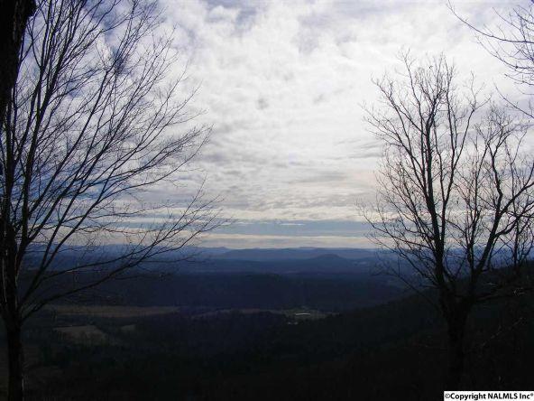 9416 County Rd. 103, Mentone, AL 35984 Photo 7
