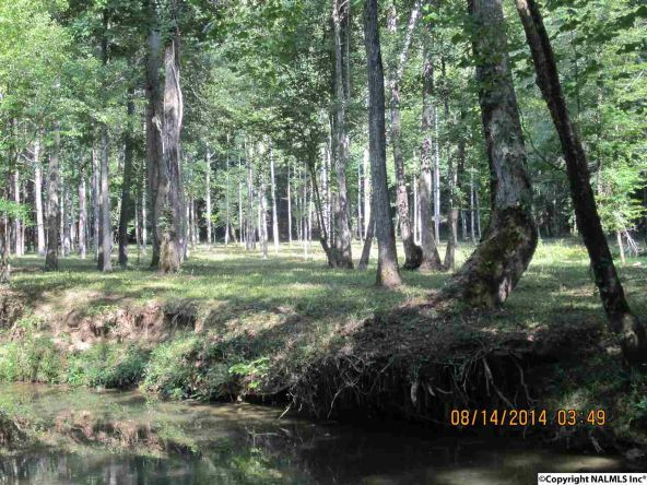 1865 County Rd. 99, Gaylesville, AL 35973 Photo 11