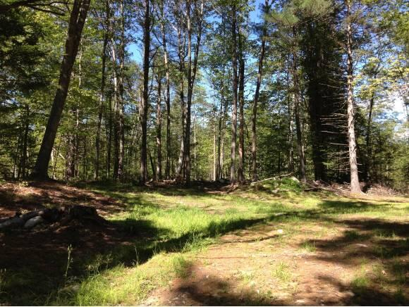 Lot 13 Ledge Hill Rd., Tuftonboro, NH 03816 Photo 8