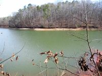 Home for sale: Lot 13 Riverbend 301 Riverbend Rd., Fair Play, SC 29643