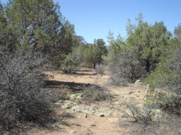 14480 N. Soza Mesa Ln., Prescott, AZ 86305 Photo 19