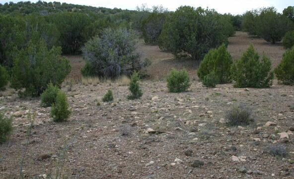 1870 W. Escondido Trail, Paulden, AZ 86334 Photo 18
