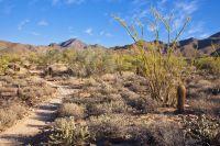 Home for sale: 156xx E. Jomax Rd., Scottsdale, AZ 85262