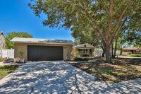 Home for sale: 8308 Flintrock Ct. N., Tampa, FL 33615