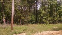 Home for sale: 0 Sandy Creek Rd., Ponce De Leon, FL 32455
