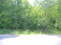 Home for sale: 1502 Sugar Maple Dr., Houghton, MI 49931