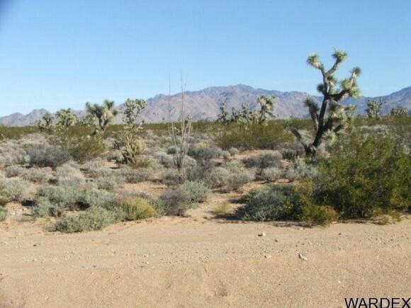 3529-B Arroyo Rd., Yucca, AZ 86438 Photo 4