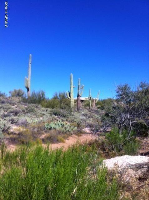 2156 E. Quails Nest Lot 137 Dr., Carefree, AZ 85377 Photo 14