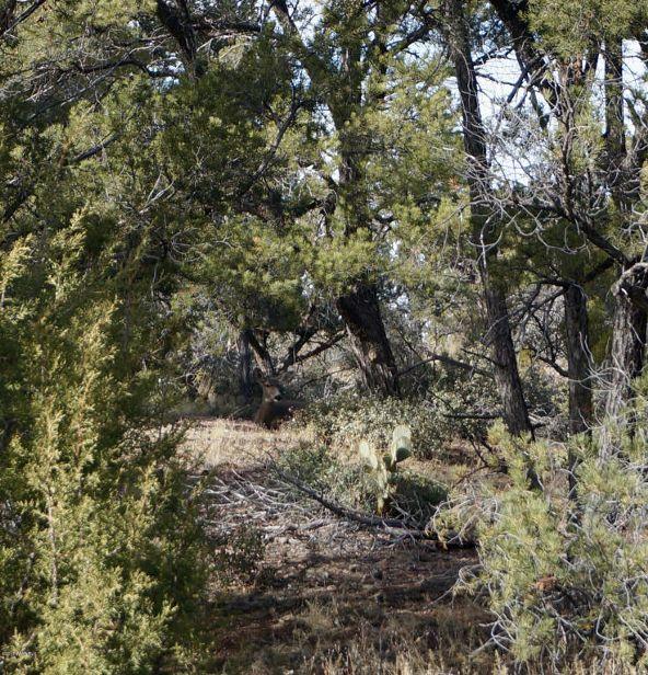 14031 N. Signal Hill Rd., Prescott, AZ 86305 Photo 63
