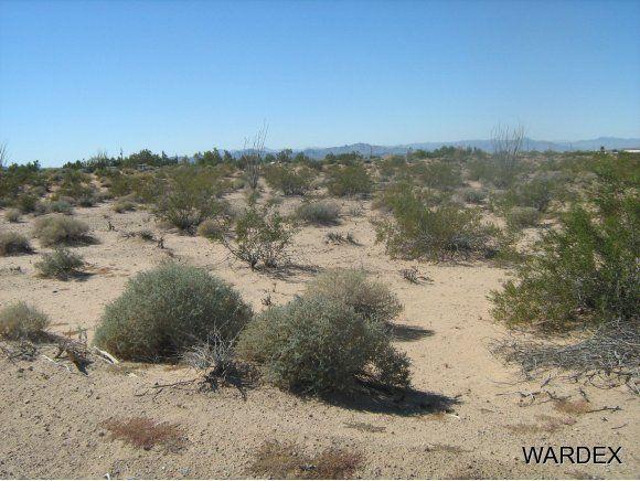 16235 S. Shep Ln. S, Yucca, AZ 86438 Photo 5