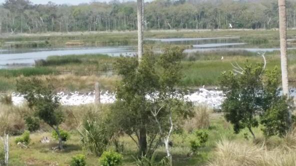 1298 Ponte Vedra Blvd., Ponte Vedra Beach, FL 32082 Photo 58