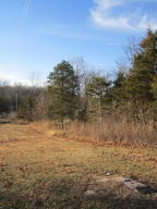 Home for sale: East Farm Rd. 34, Fair Grove, MO 65648