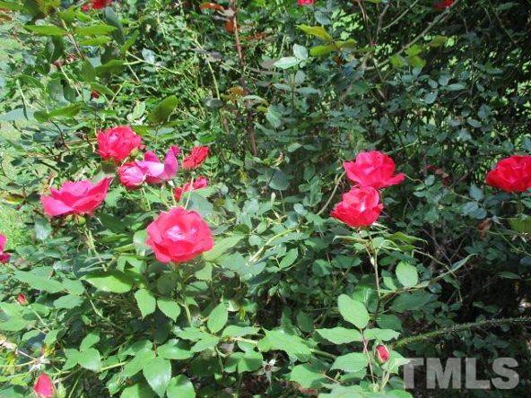 6205 Quail Side Ct., Raleigh, NC 27603 Photo 21