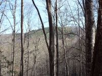 Home for sale: 121 Good Things Rd., Sylva, NC 28723