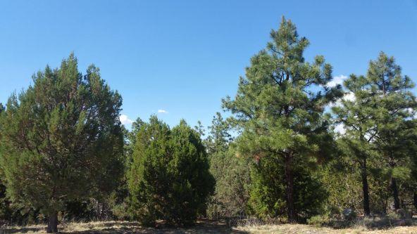 1496 Shade Tree Dr., Heber, AZ 85928 Photo 4