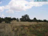 Home for sale: 00 32nd St., Silver City, NM 88061