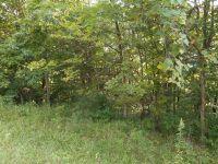 Home for sale: Houseman Ln., Bainbridge, OH 45612