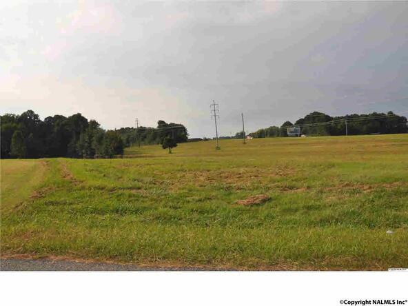 Hwy. 231 N. Little Creek Rd., Arab, AL 35016 Photo 7