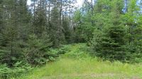 Home for sale: On Horned Owl Rd., Presque Isle, WI 54557